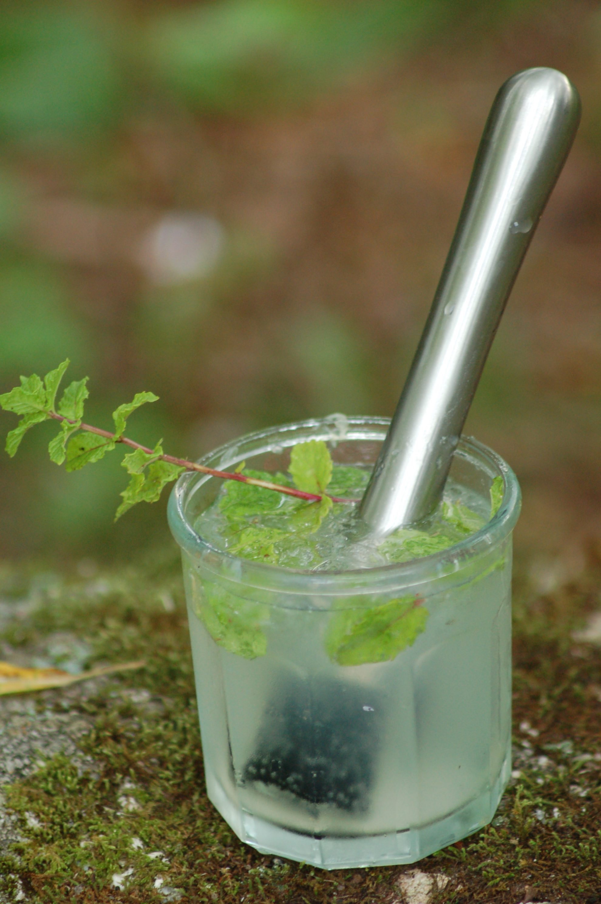 Mojito Recipe Muddle Your Way to Happiness