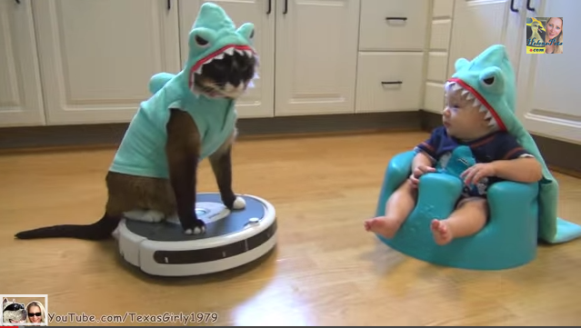 Must Watch Video: Baby and Cat Play Shark