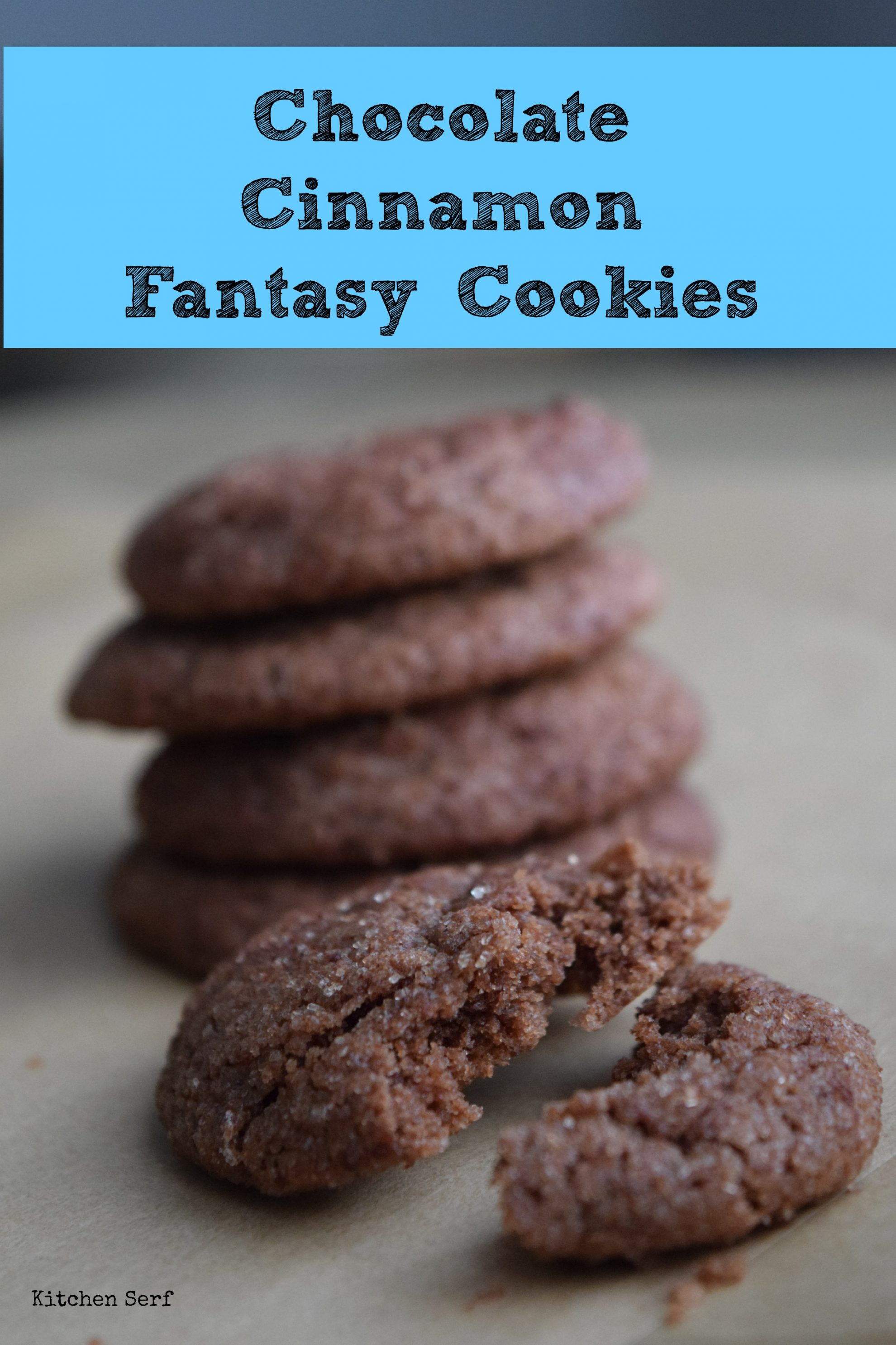 Chocolate Cinnamon Fantasy Cookies