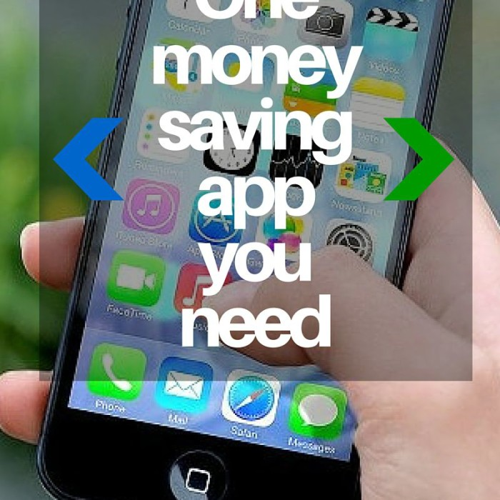 Saving Money App You Need: Hip2Save
