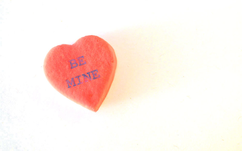 Love List: Cookbook Club, Seed Starting Advice + Interactive Art Exhibit from Your Laptop