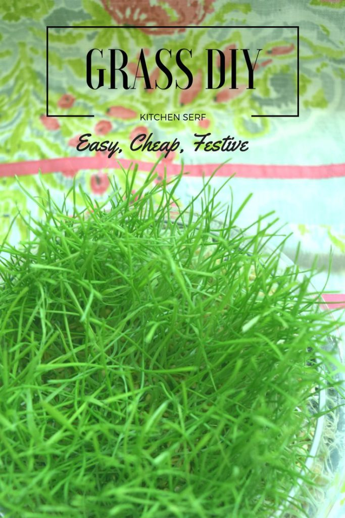 Grow your own grass for Easter baskets and party decorations, including baby showers, teas and princess parties. Cheap, festive, easy, get directions at kitchenserf.com.