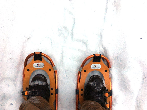 I was snowshoeing around our pond after work this week.